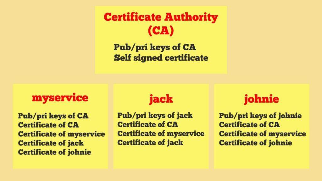 X.509 Public Key Certificate